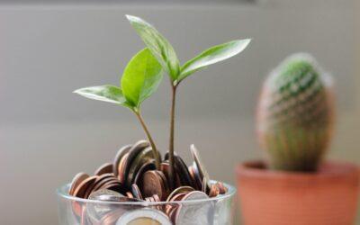 Short on Marketing Dollars?